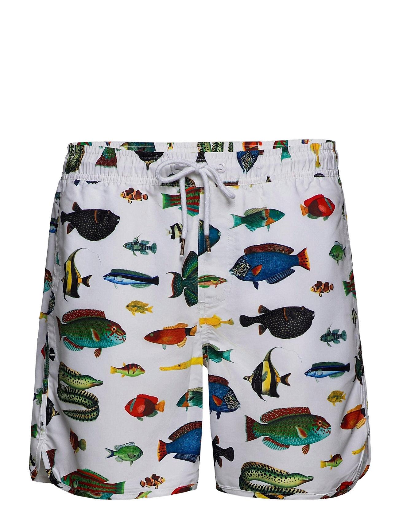 DEDICATED Swim Shorts Tropical Fish Badeshorts Hvit DEDICATED