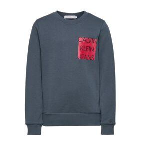 Calvin Logo Chest Box Sweatshirt Sweat-shirt Genser Blå Calvin Klein