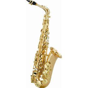 20 Chateau VCH-800LY2 alt-saksofon
