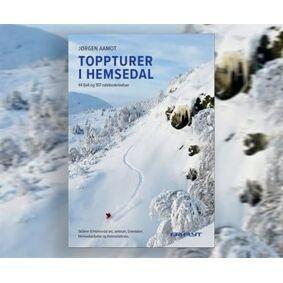 Fri flyt Toppturer i Hemsedal