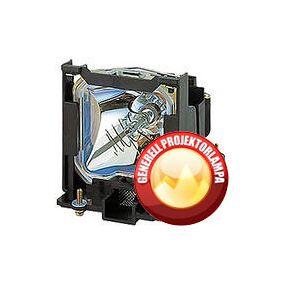 Optoma Projektorlampe OPTOMA DP7259 Originallampe med lampeholder - komplett modul
