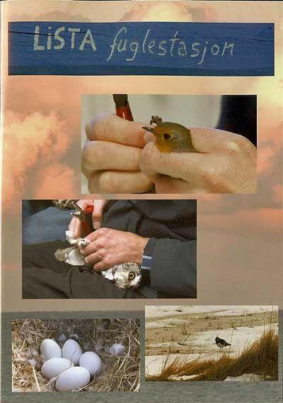 Lister Videoklubb Lista Fuglestasjon DVD film