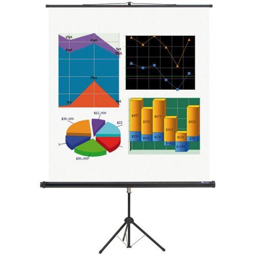 B2B Partner Ekran projekcyjny na statywie basic 2000 x 2000 mm