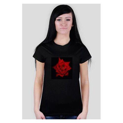 bajeczne Róża