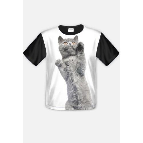 KalaClothesShop Cat