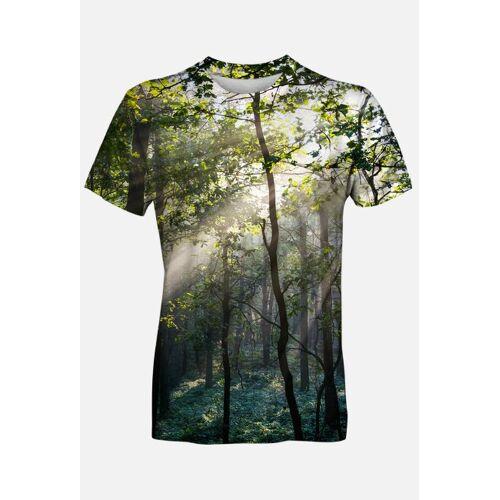 botanic Słoneczny las