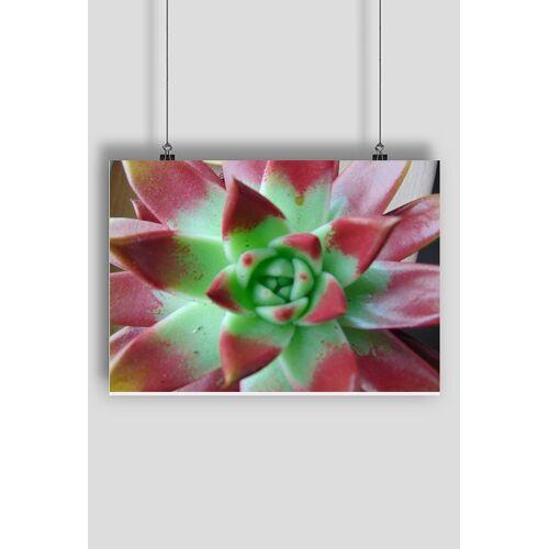 beeng Plakat kwiat