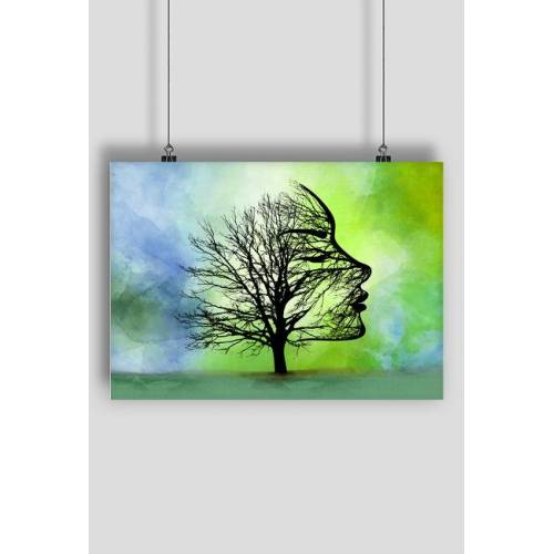 aska Drzewo