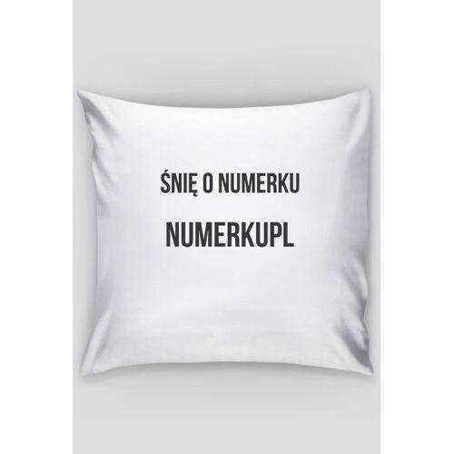 NumerPL Sen o numerku