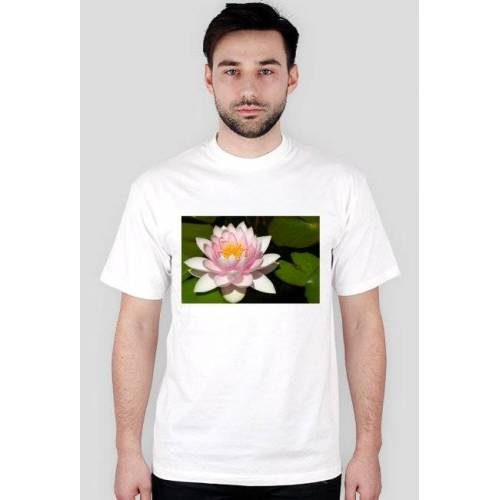 naturaUSA Wodna lilia