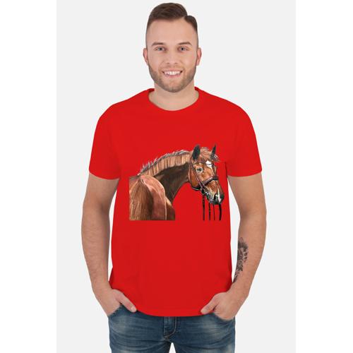 EquusArt Koń sportowy