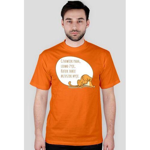 geekmind Człowiek pada, ledwo żyje, kotek sobie brzuszek myje  t-shirt męski