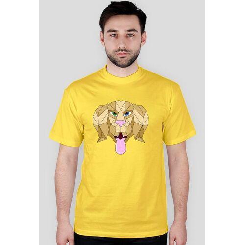 TBL Pies złoty - męski