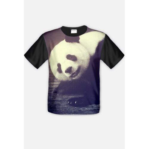 animalsandfriends Panda bear