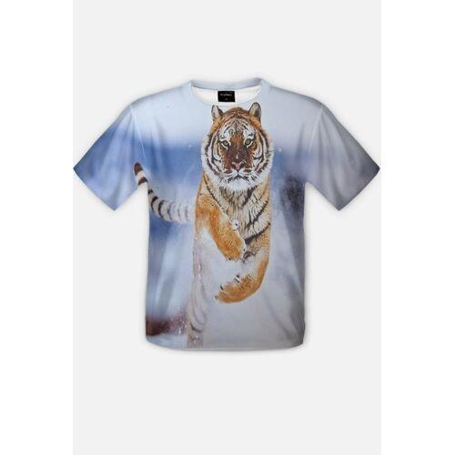 fotograficzny #fotograficzny - biegnący tygrys