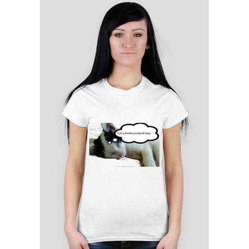 lewkanapowy T-shirt filemon