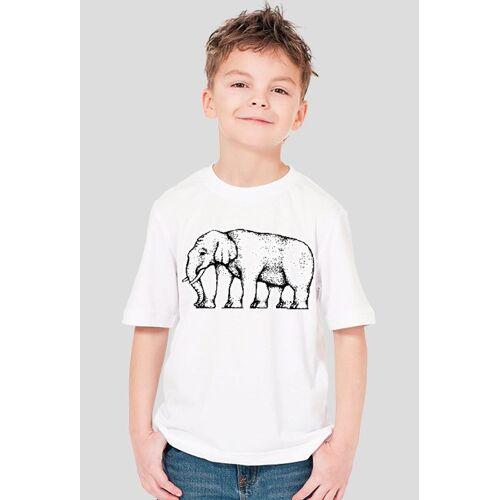 iluzje-optyczne Chłopięca - słoń