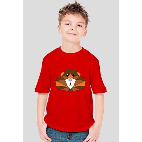 TBL Chomik rudo-brązowy - chłopięcy