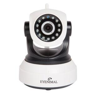 Eyenimal Pet Vision Live HD câmara de vigilância gatos