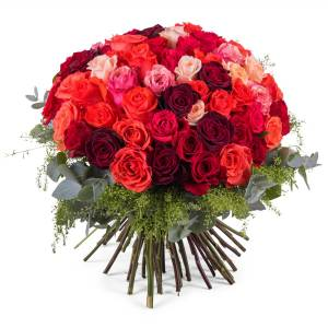Interflora 60 Rosas Multicor de Pé Curto   Interflora