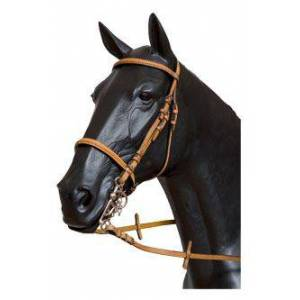 Galequus English Bridle T-7 Front. And Mus. Trenz Full Avellana Avelã
