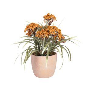 Planta artificial Leonitis leonurus em vaso de cerâmica