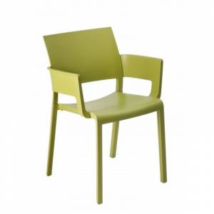 Resol - Conjunto de 2 cadeiras com braços verde azeitona FIONA - RESOL