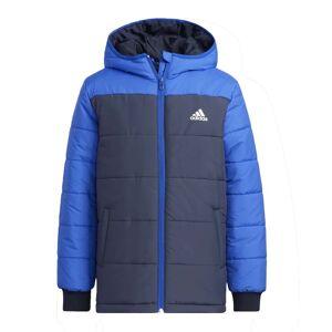 Anorack Casual_niño_adidas Yk Padded Jkt 128 Azul
