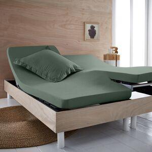 Lençol-capa em algodão bio, cama articulada, Scenario   Eucalípto