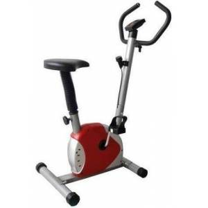 FitTronic Bicicleta Fitness mecanica Fittronic 100B (Rosie)