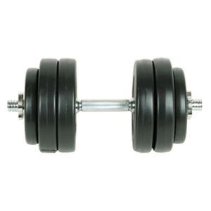 vidaXL Set gantere 15 kg