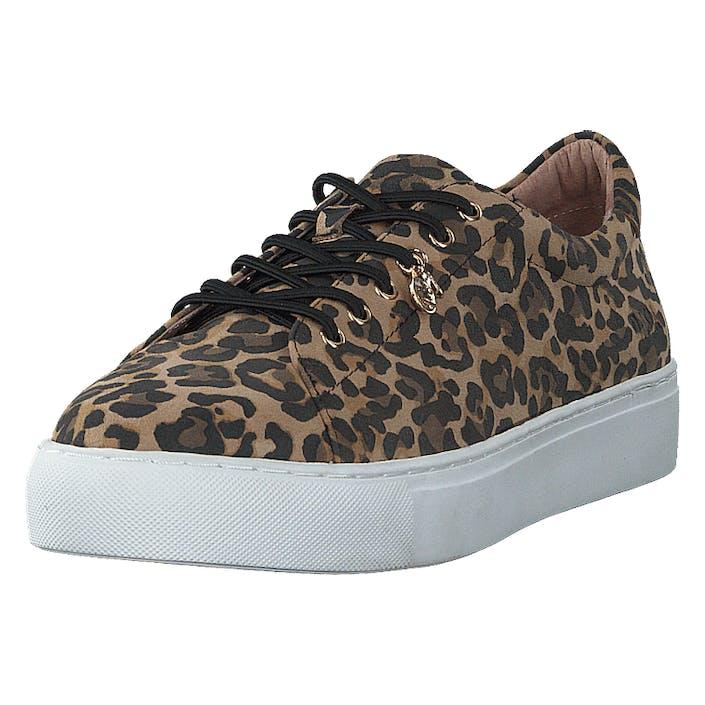 Dasia Starlily Lace Up Leo, Dam, Shoes, brun, EU 37