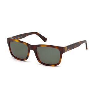 TODS TO0163 Solglasögon male Tortoise