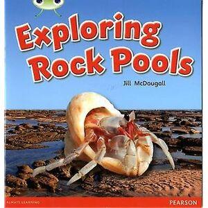 Bug Club Green C Exploring Rock Pools 6pack av McDougall & Jill