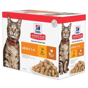 Hill's Science Plan Adult Våtfoder Multipack Kyckling & Kalkon för Katt (12x85g)