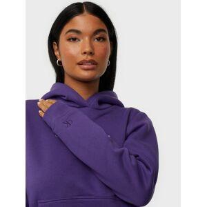 Calvin Klein Jeans Shrunken Inst Reg Hoodie Hoodies