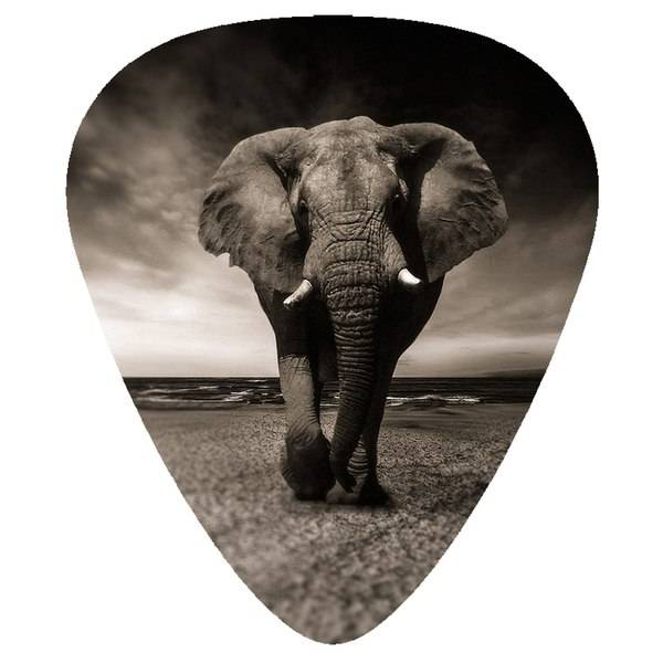 No name Plektrum - Elefant - 10-pack - Gitarr