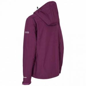 Trespass WomensLadies Aviana Soft Shell Jacka S Potent Purple