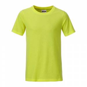 James and Nicholson Pojkar Basic T-shirt S Syra gul