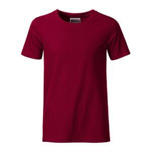 James and Nicholson Pojkar Basic T-shirt L Vinlila