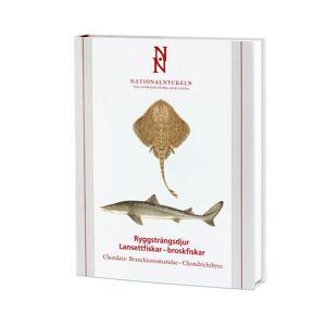 No name Ryggsträngsdjur : Lansettfiskar - Broskfiskar. 9789188506740