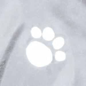 TRIXIE Regnjacka för hund Tarbes M 50 cm PVC transparent