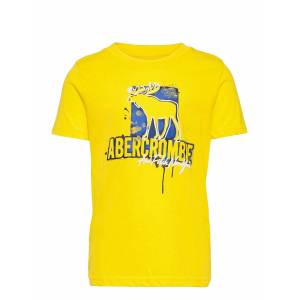 Abercrombie & Fitch Kids Boys Graphics T-shirts Short-sleeved Gul Abercrombie & Fitch