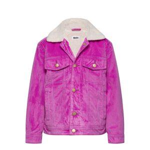 Molo Hen Outerwear Jackets & Coats Denim & Corduroy Lila Molo