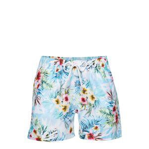 Panos Emporio Paradise Mario Floral Sorbet Boy Shorts Shorts Blå Panos Emporio