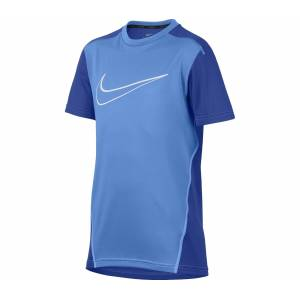 Nike - Dry Barn training top (blå) - S