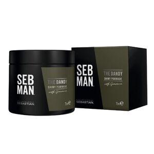 Sebastian Seb Man The Dandy Light Hold Pomade 75ml