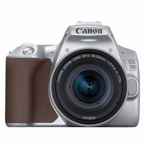 Canon EOS 250D hus, silver + EF-S 18-55/4-5,6 IS STM