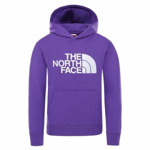 The North Face Youth Drew Peak Pullover Hoodie Lila