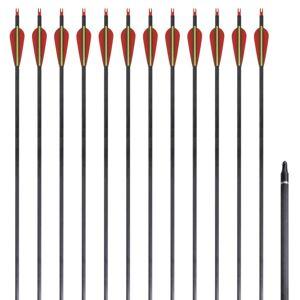 """vidaXL Štandardné karbónové šípy na reflexný luk 30"""" 0,76 cm 12 ks"""